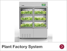Plant Factory System