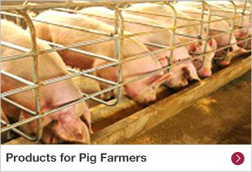 Products for Pig Farmers