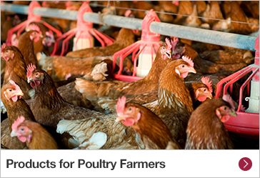 Products for Poultry Farmers
