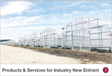 Products & Services for Industry New Entrants